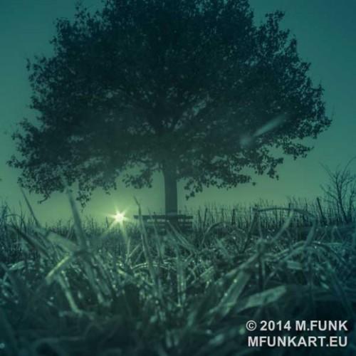 GREEN-TREE-1-580x580